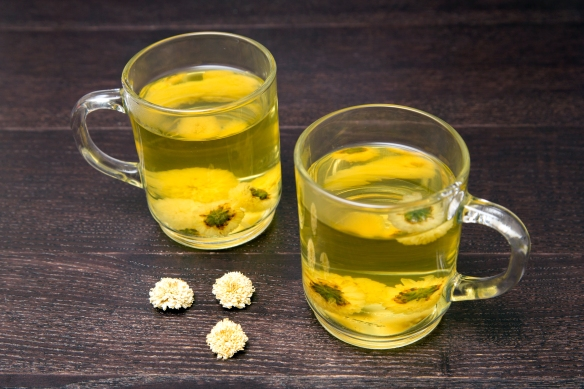 Chrysanthemum Tea2