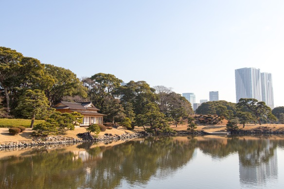 Hama Rikyu Garden. Old and new buildings.