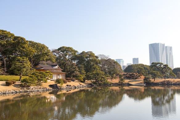 Hama Rikyu Garden. Old and new buildings.